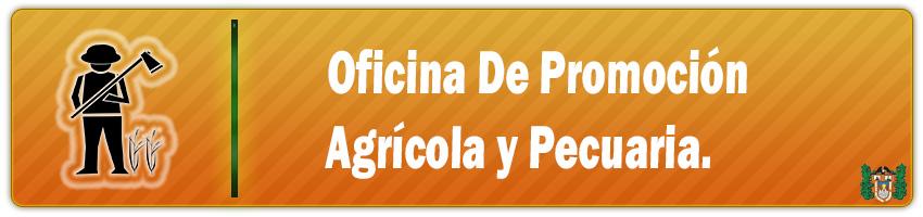 oficina de promocion agricola y pecuaria