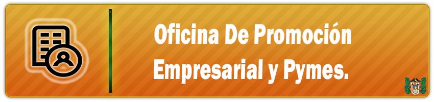oficina de promocion empresarial y pymes
